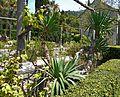 Arboretum Trsteno 02.jpg