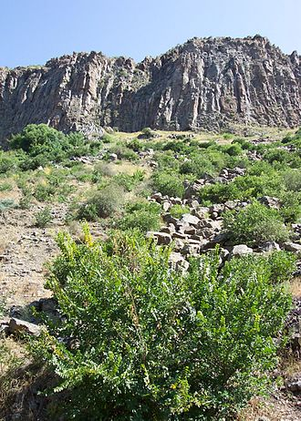 Geography of Armenia - Armenian terrain