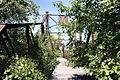 Asylum Bridge 9 2012 (2).JPG