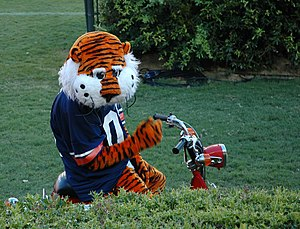 Aubie - Aubie on his moped