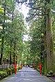 Avenue - Hakone-jinja - Hakone, Japan - DSC05864.jpg
