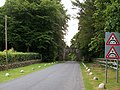 Avenue leading to the Barbican Gate of Tollymore Forest Park - geograph.org.uk - 1970603.jpg