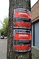 BLM Seattle on June 7, 2020 - 2.jpg