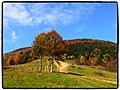 Babie leto pod Pupovom - panoramio.jpg