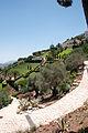Baha'i Gardens, Haifa (3756428987).jpg