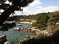 Bar, Montenegro - panoramio (2).jpg