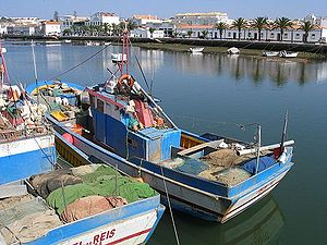 Fishing in Portugal - Many Portuguese coastal towns are fishing centres - fishing boats in Tavira, Algarve.