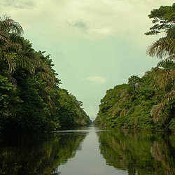 Barra del Colorado Waterway.jpg