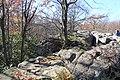 Bauchman Rocks - panoramio (7).jpg