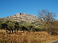 Beaurecueil-FR-13-vue du Mont Venturi-01.jpg