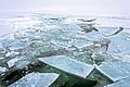 Beautiful Ice in the Arctic (19706643471).jpg
