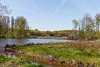 Beekdal Linde Bekhofplas. Een waardevol natuurterrein van Staatsbosbeheer In de provincie Friesland 02.jpg