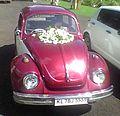 Beetle Volkswagen.jpg