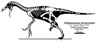 Beipiaosaurus - Skeletal diagram
