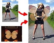 Beispiel einer Fotomontage.jpg