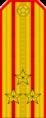 Belarus MIA—04 Colonel rank insignia (Golden).png