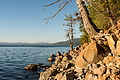 Below Vista Point on the East Shore of Lake Almanor.jpg