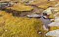 Bergtocht van parkeerplaats bij centrale Malga Mare naar Lago Lungo. Waterstromen over het bergplateau 01.jpg