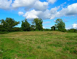 Picture of a grass covered bank which is a long barrow known as Bevis's Thumb near Compton, West Sussex