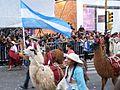 Bicentenario - Desfile Federal (37).jpg