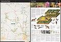 Big Thicket National Preserve, Texas LOC 2011590240.jpg