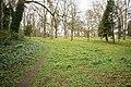 Bilsby House woodland - geograph.org.uk - 770710.jpg