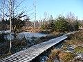 Birkensee im Naturpark Schönbuch - panoramio.jpg