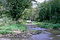 Bixby-State-Preserve Clayton-County,-Iowa Sunday,-September-4,-2011 c.jpg