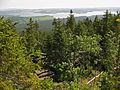Blick vom Bärenstein (1.077m) auf den Moldaustausee in Tschechien 2014-05 NDOÖ 284.jpg