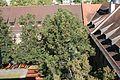 Blick vom Neuen Kollegiengebäude Heidelberg 030.jpg