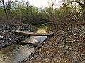 Bobrovnya log bridge1.JPG
