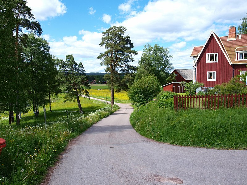 File:Boggvägen i Orsa - panoramio.jpg