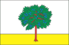Flag of Bohodukhiv