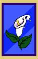 BoneCraft Elvin Banners.png
