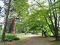 Botanischer Garten Freiburg - DSC06465.jpg