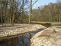 Botterbeek P3260268.JPG