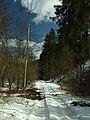 Bratřínov, údolí potoka II.JPG