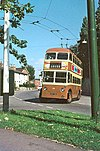 Maidstone trolleybus, September 1966.