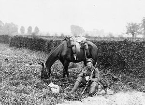 3rd Cavalry Division (United Kingdom) - British cavalryman in Belgium, 13 October 1914
