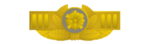 Brooch rank insigna for superintendent supervisor of japanese police.png
