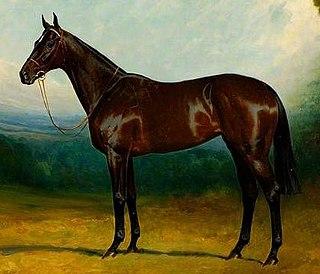 Brown Betty (horse) British-bred Thoroughbred racehorse