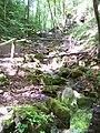Bubovické vodopády, horní část včetně lávky, zdola.jpg