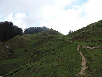 Budher Meadows - Path.jpg