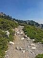 Bumpass Hell Trail before rehabilitation (777a5c8a-8798-4a7c-8bbd-3c7b521b20d4).jpg
