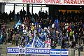 Bundesliga FC Red Bull Salzburg gegen SV Grödig 17.JPG