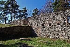 Burg Waseneck 1.jpg