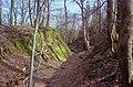 Burgruine-Hattstein-Halsgraben-B-20-JR-2004-03-28.jpg