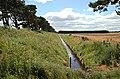 By Rhynd - geograph.org.uk - 201505.jpg