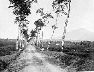 Tasikmalaya Regency - A road towards Tasikmalaya with Mount Galunggung seen in the distance, 1920–1940.