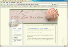 An example of a web page that uses CSS Layouts